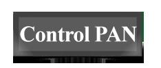 کنترل پن